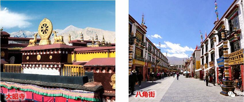 青海旅游公司